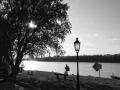 Ordasi Dunapart_04.jpg